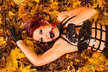 Ball Gag Autumn Colors