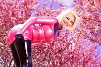 Cherry Blossoms and Latex